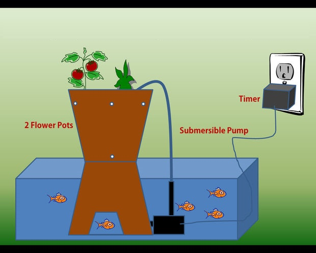 how to purify water for fish tank