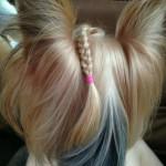 dogs hairdo2