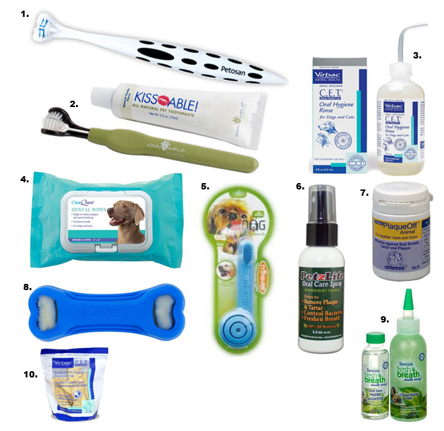 Sample set of accessories for your dogs in their hygiene