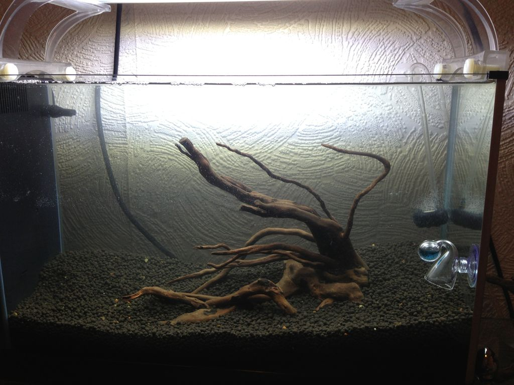 Fantastic Home Made Fish Tank Decoration