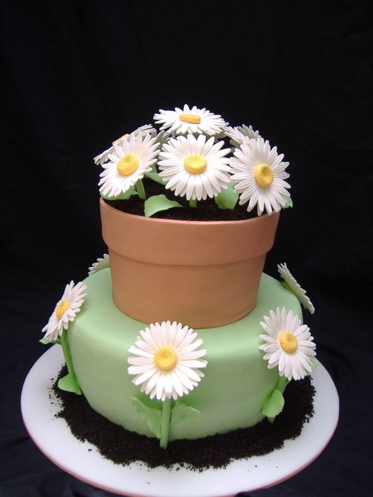 Gerber Daisies And Flower Pot